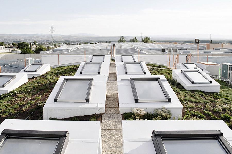 """""""La arquitectura bioclimática no es una moda"""", entrevista al arquitecto Kusha Ghoreishi Karimi"""