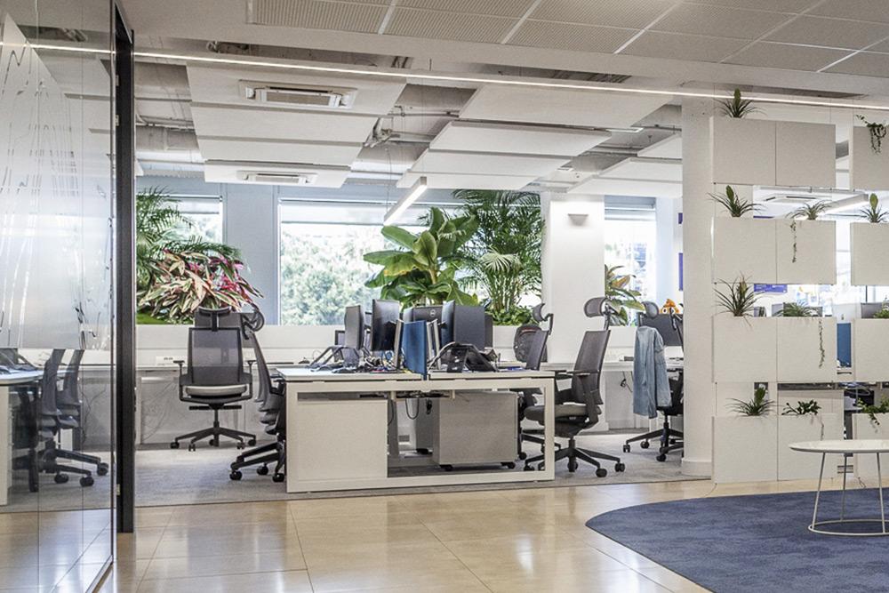 La Neuroarquitectura puede ser aplicada a los espacios de trabajo